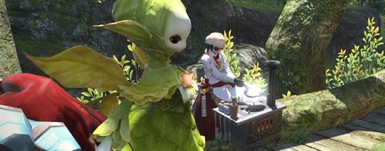 トマトシチュー作り