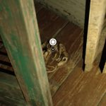 バイオハザード7 ベッドルームとネズミの死骸!発見場所はこちら